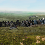 Одринската обсада – панорама