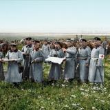 Пета пехотна дивизия